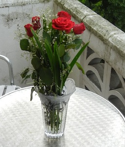 バレンタインデーは赤いバラ