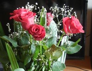 来年もお願いします、赤いバラ