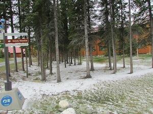 デナリには初雪が