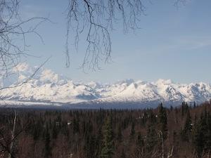 山の上からの景色(5月下旬)