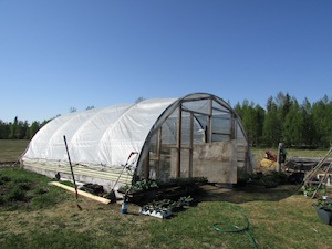 早春、温室で野菜を作ります