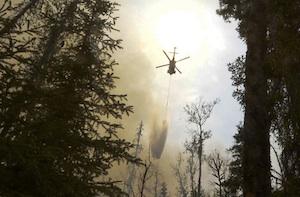 アラスカの山火事 by Reuter