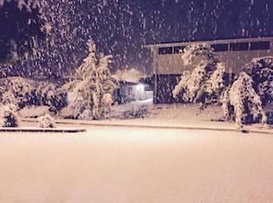 ブルーマウンテンの雪 by Today Show FB