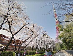 いよいよお花の季節 by Google Streetview