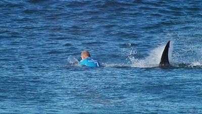 サメに襲われるミックファニング