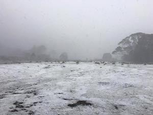タスマニアは本日雪でした