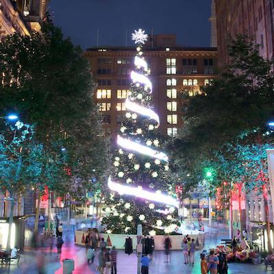 Martin Placeのクリスマスツリー