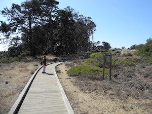 公園内にあるハイキングトレイル